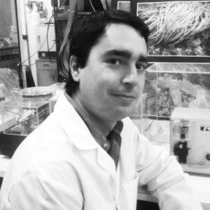 Miguel Mondragão